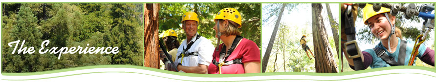zip line tours pricing and reservations