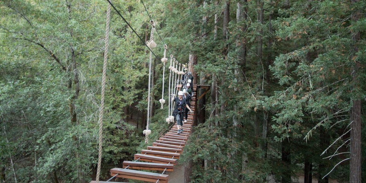 sonomacanopytour131; preparing gear; sonomacanopytour012 ... & Videos | Sonoma Canopy Tours
